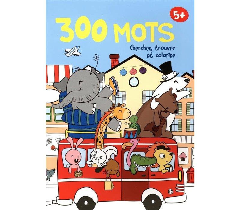 300 mots Chercher, trouver et colorier 5+