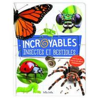 Incroyables insectes et bestioles