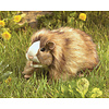 folkmanis Marionnette cochon dinde -  Guinea Pig