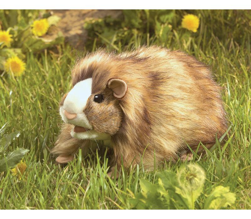 Marionnette cochon dinde -  Guinea Pig