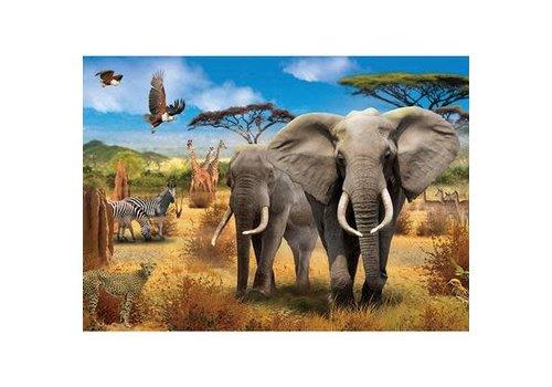 500pc, African Savannah
