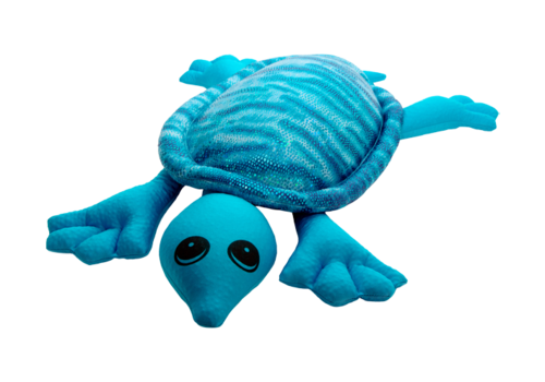 Tortue turquoise manimo