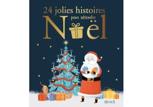 24 jolies histoires pour attendre noel