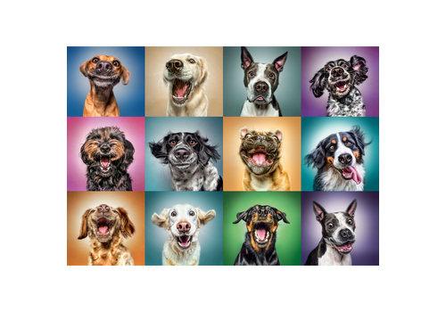 Casse-tête 1000 morceaux chiens amusants - 1000 pieces puzzle