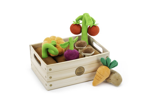 Educational Insight Vegetable Garden