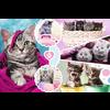 Casse-tête - Adorables chatons - 160 morceaux