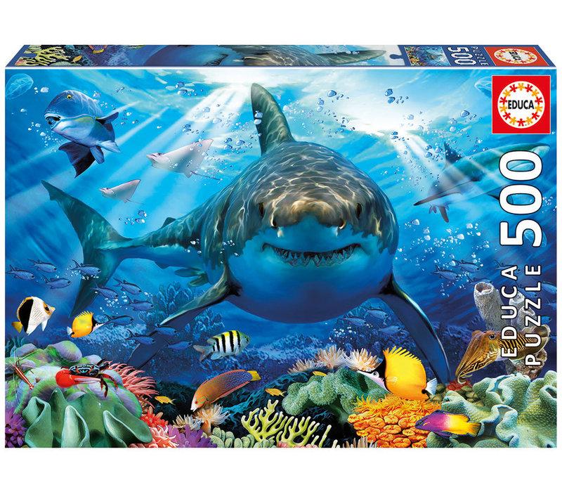 Grand requin blanc 500 mcx