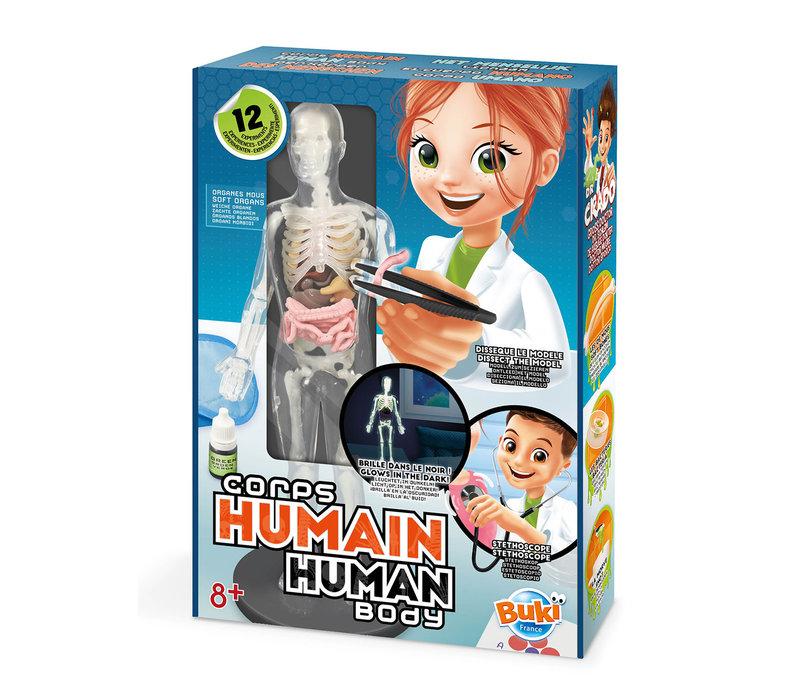 Buki- Corps humain