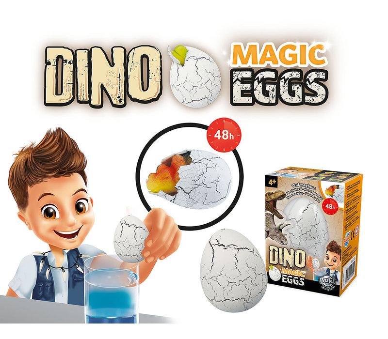 Buki - Dino Magic Eggs assorted