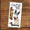 pico Tatouages temporaires - Les chiens