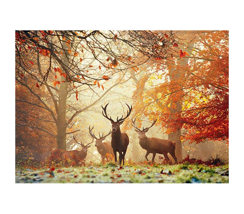 Casse-tête 1000 morceaux, Stags, Magic Forest
