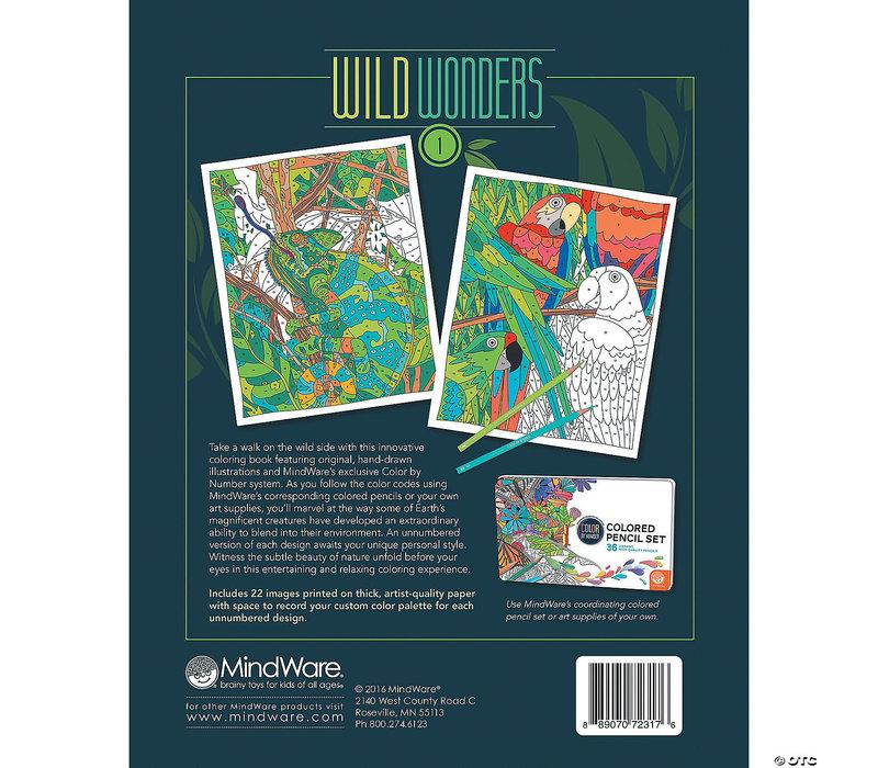 Extreme Maze : Wild Wonders : Book 1