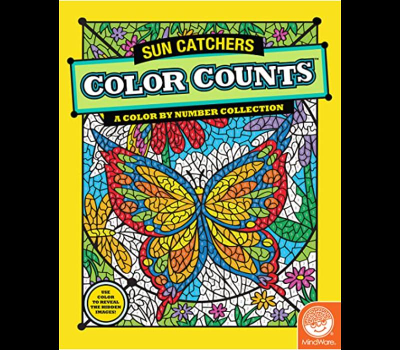 CBN Color Counts : Sun Catchers