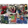 Ravensburger Casse-tête 1000 morceaux - Exposition Florale
