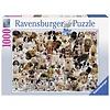 Ravensburger Casse-tête 1000 morceaux - Portraits de chiens