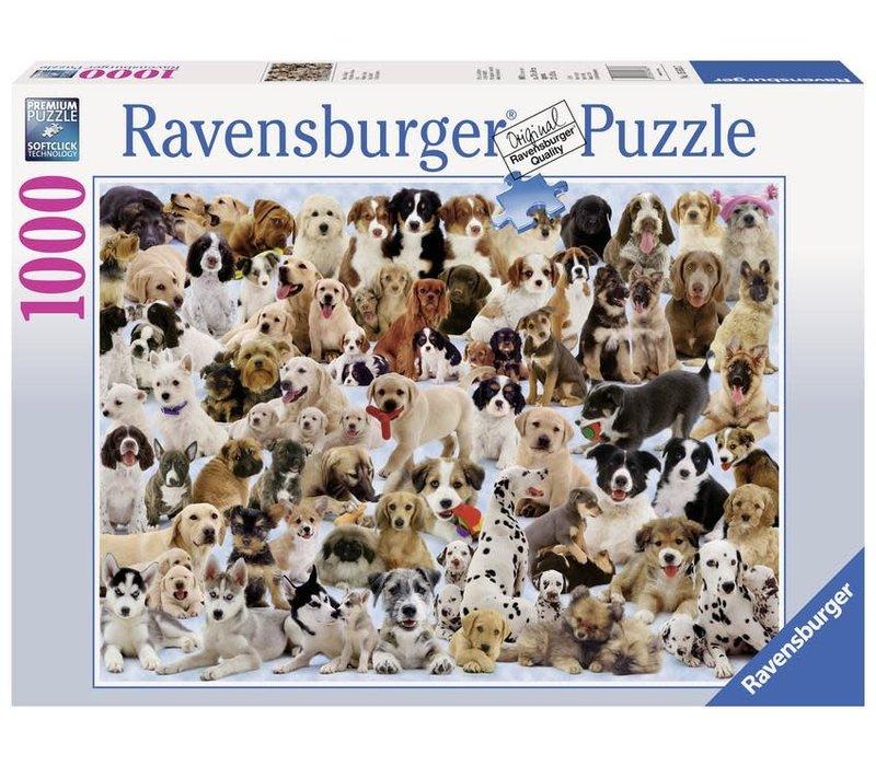 Casse-tête 1000 morceaux - Portraits de chiens