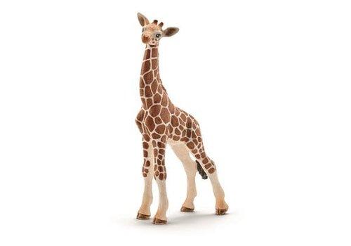 Schleich Bebe Girafe