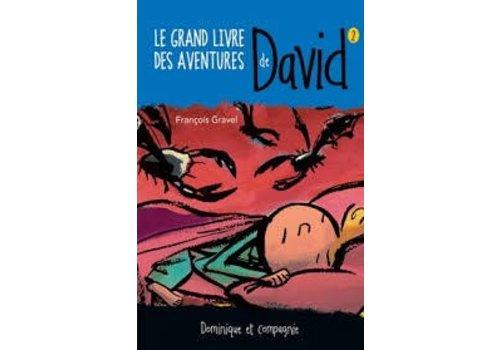 Le grand livre des aventures de David 2