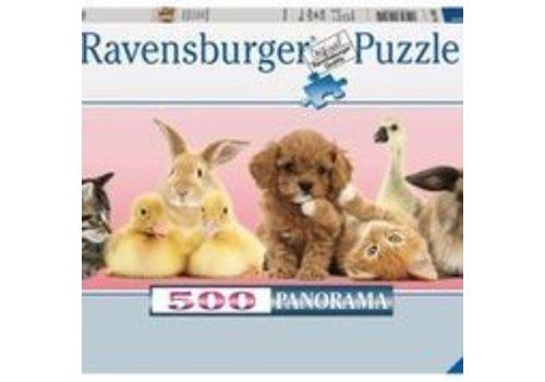 Ravensburger Becs et museaux