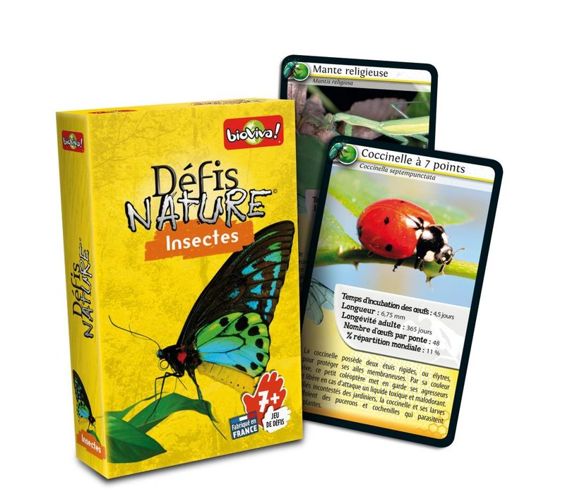 Defis Nature / Insectes