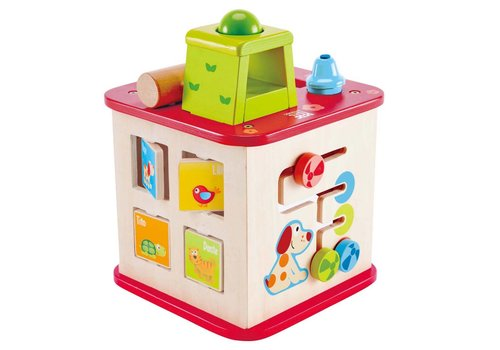 Hape CJ Friendship Activity Cube