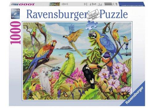 Ravensburger La baie des perroquets