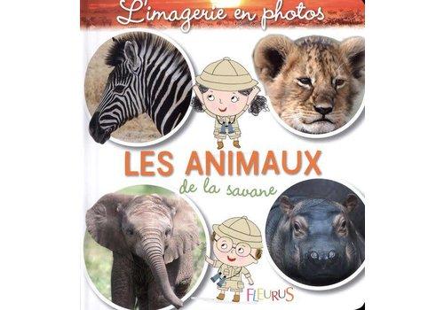 L'imagerie en photos / Les animaux de la savane