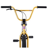 FITBIKECO. 2021 PRK - (XS) ED Gold