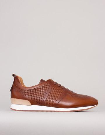 Zampiere Zampiere Prince Brown Sneakers