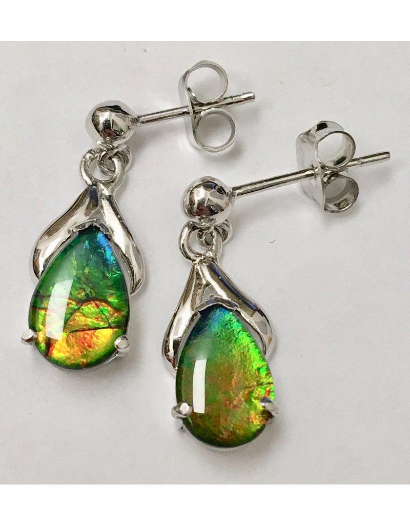 Korite Teardrop Dangle Ammolite Earrings SS