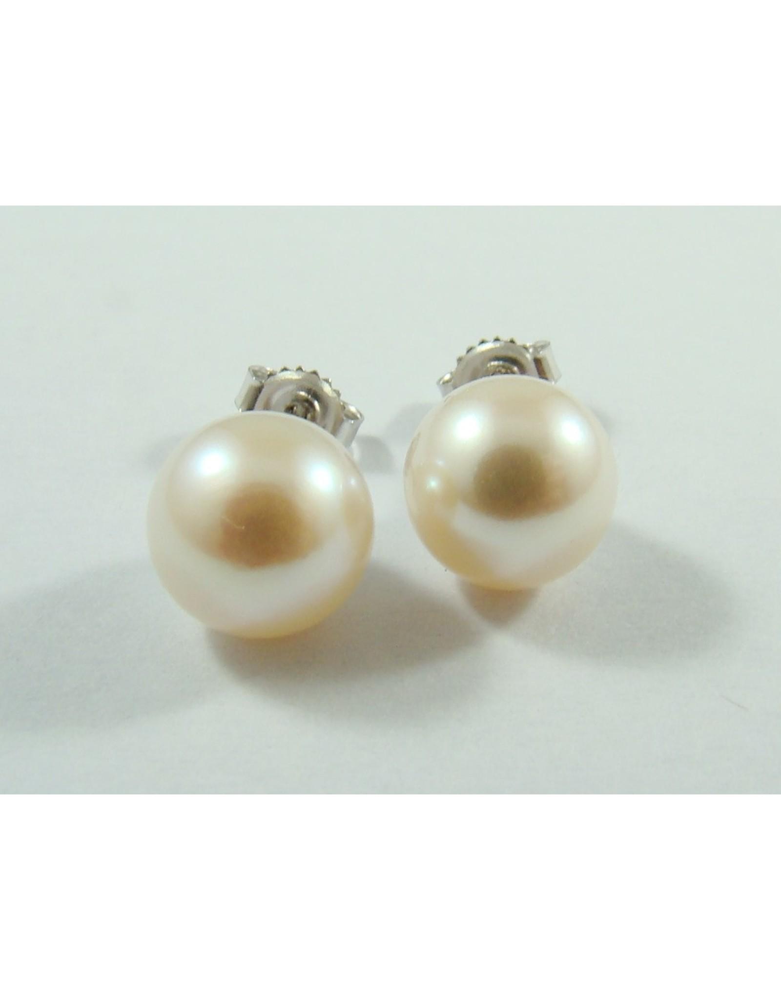 Freshwater Pearl Stud Earrings 14KW