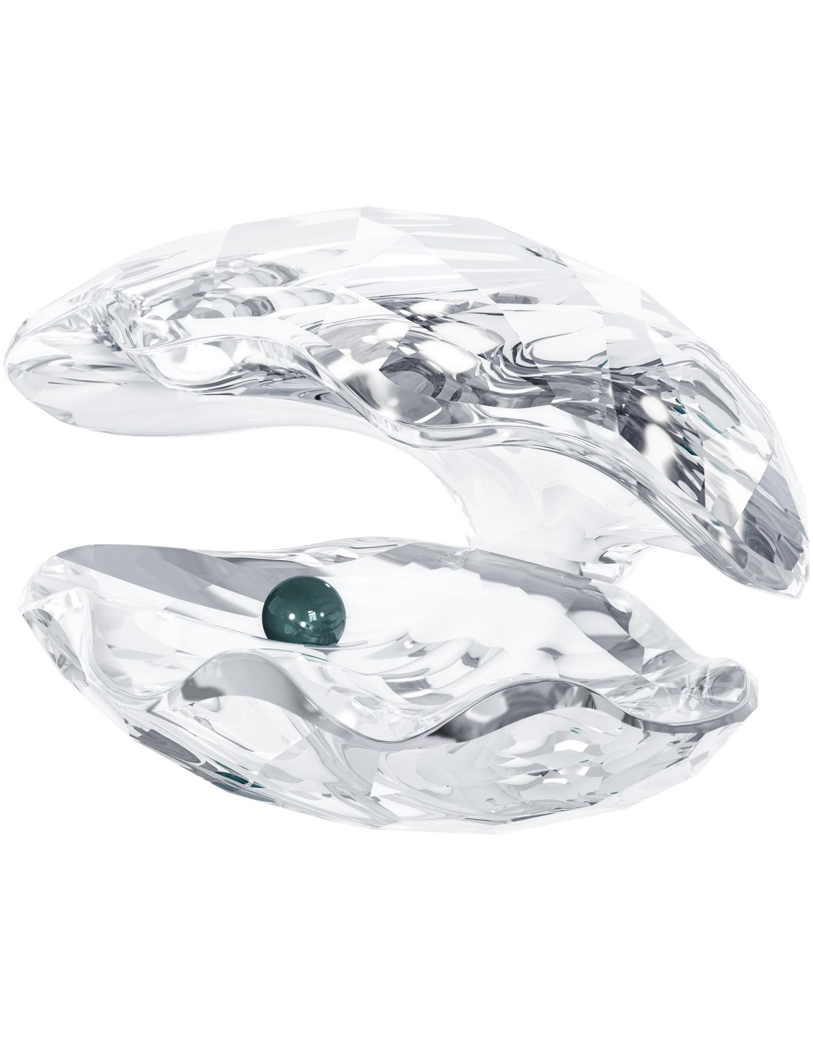 Swarovski Swarovski Crystal Oyster