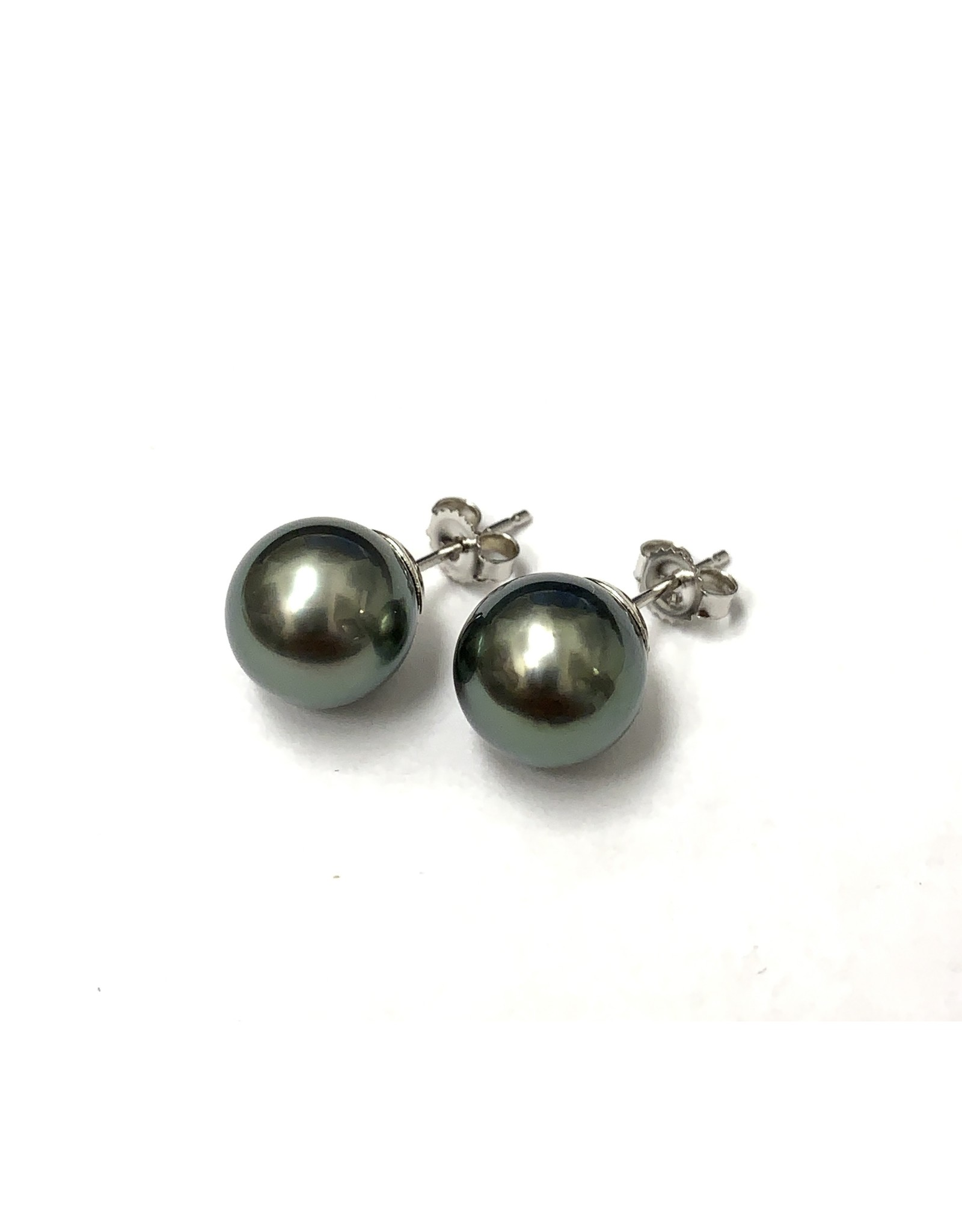 Tahitian Pearl Stud Earrings 14KW