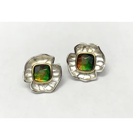 Korite Taylor Ammolite Earrings