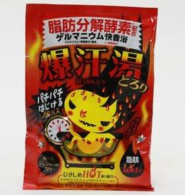 Bison 爆汗汤 热感生姜