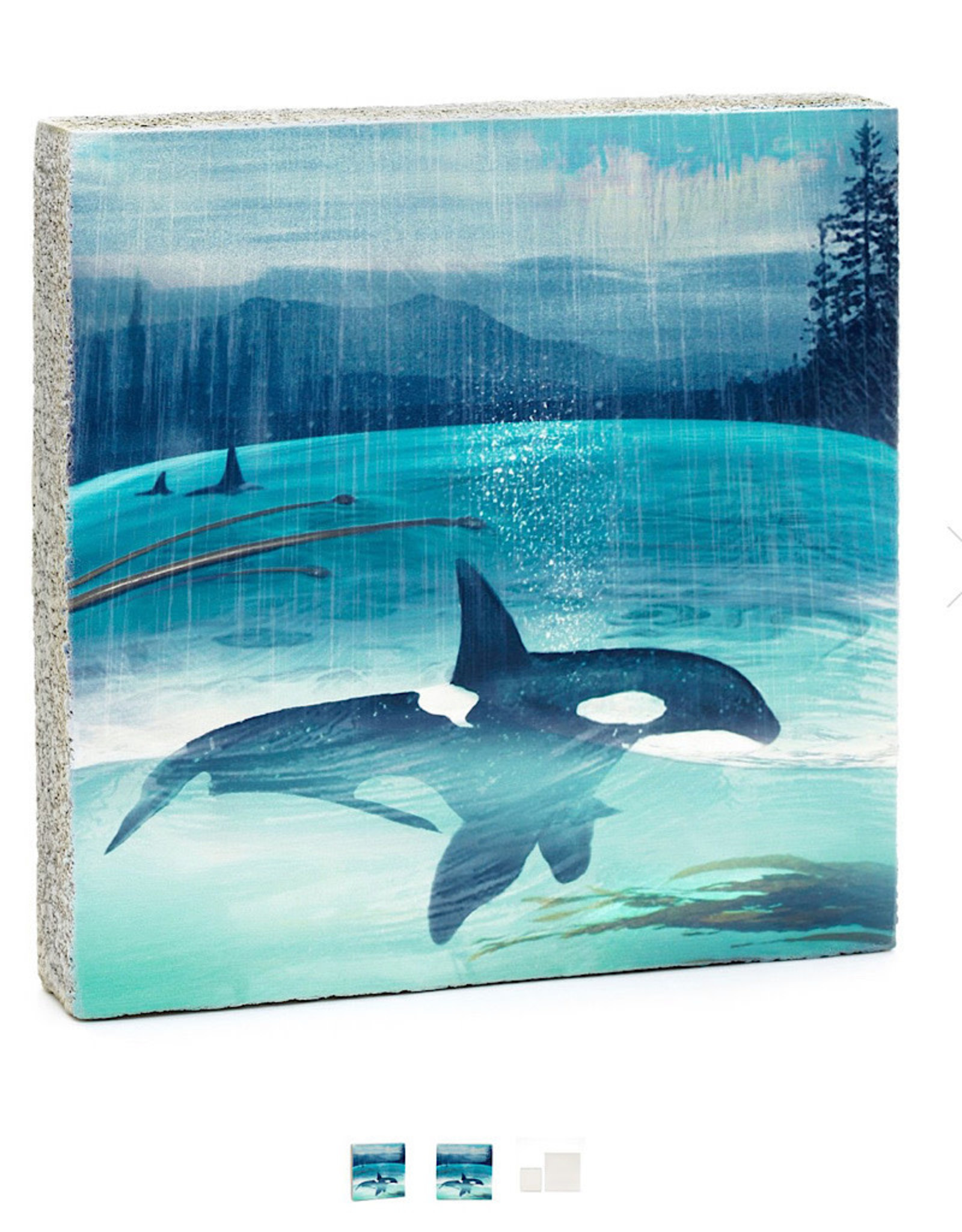 Cedar Mountain Small Art Block click for more