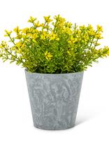 "Yellow Flowering Plant Pot 6"""