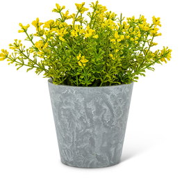 Yellow Flowering Plant Pot 6""