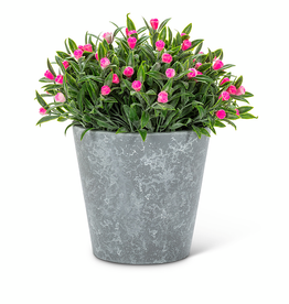 "Pink Flowering Plant Pot 6"""
