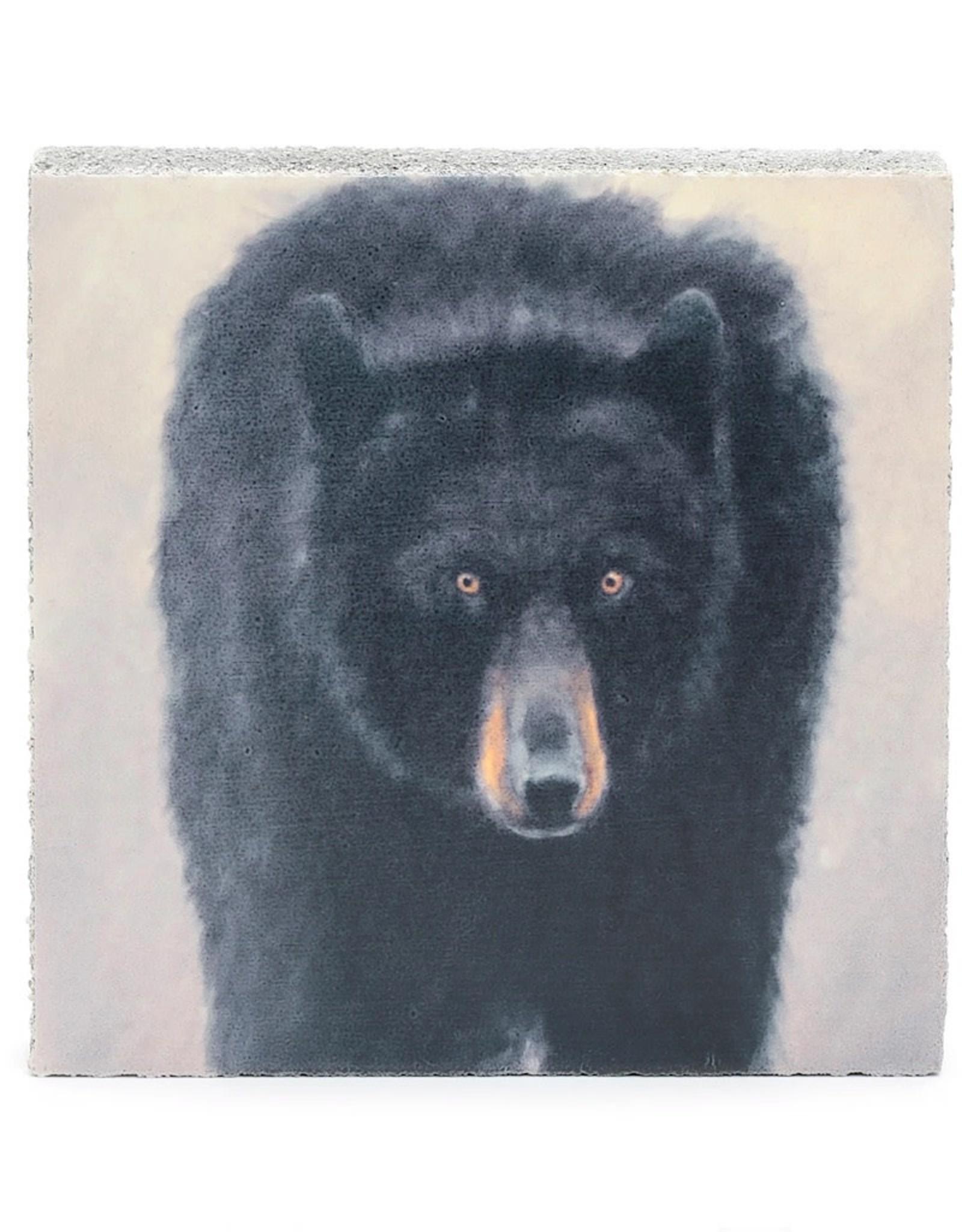 Cedar Mountain Small Art Block Black Bear