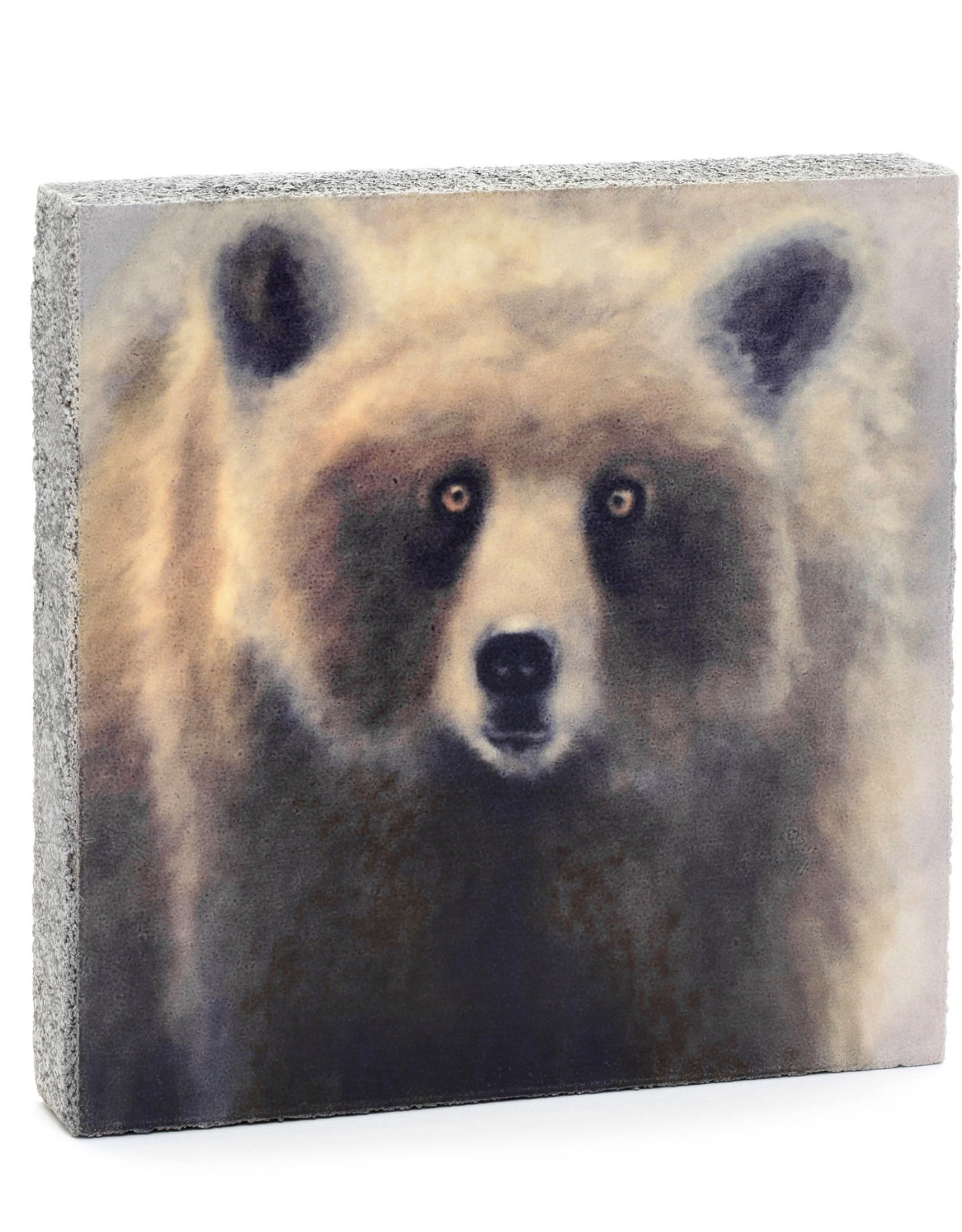 Cedar Mountain Small Art Block Harvest Moon Bear