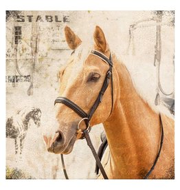 Cedar Mountain Small Art Block Stable horse