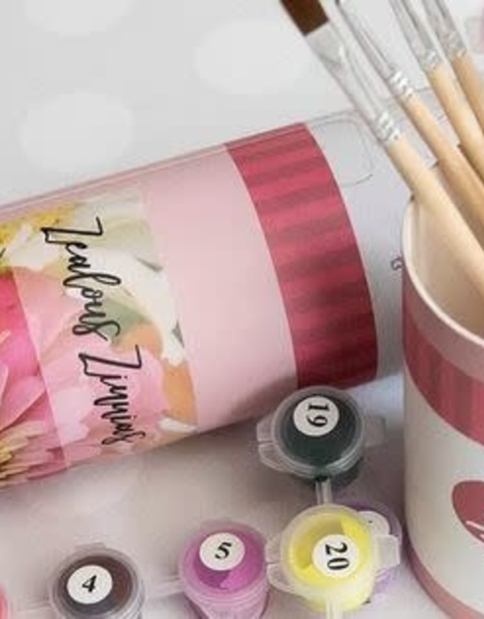 Pink Piccasso Paint By Number Canvas Kit