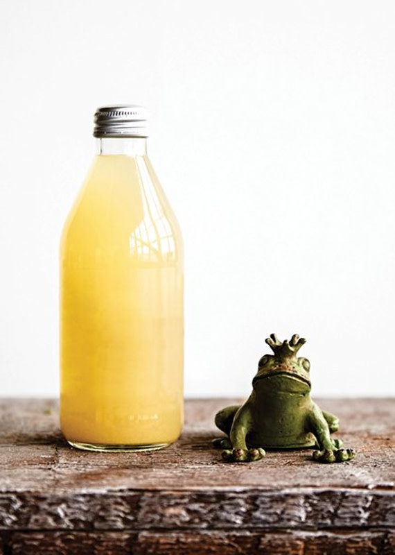 Creative Co-Op Pewter Frog Bottle Opener