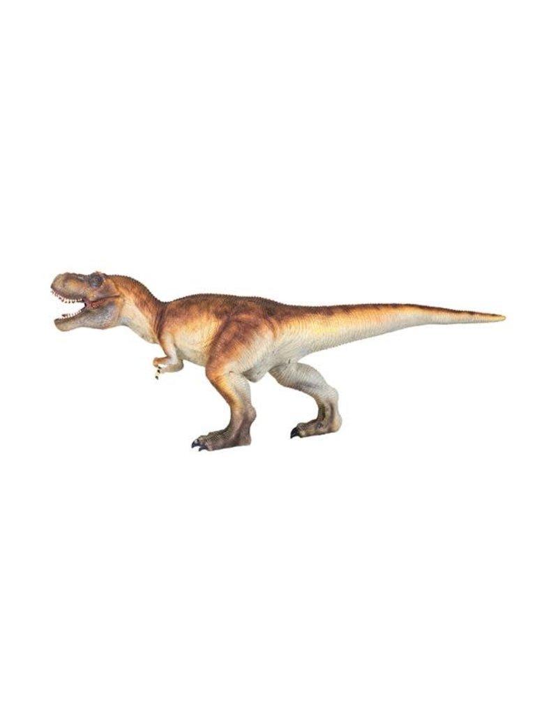 Tyrannosaurus Medium