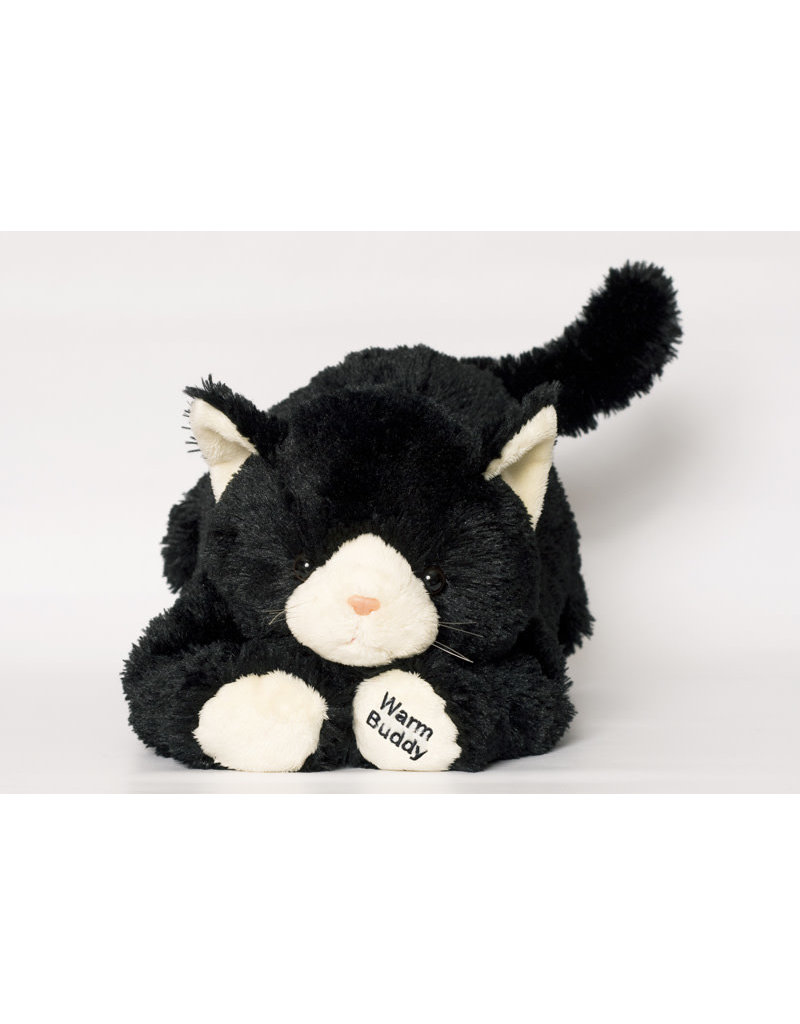 Large Black Kitten