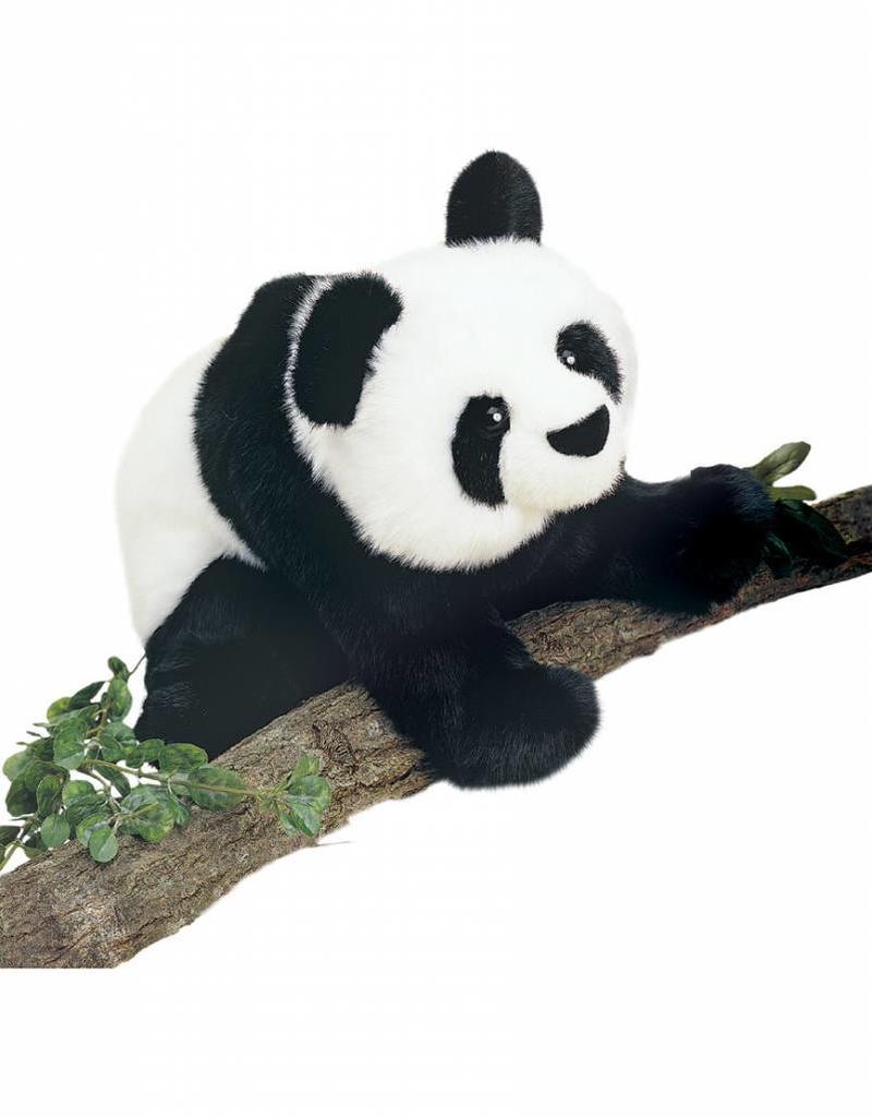 Douglas Mai-Ling Panda 15''