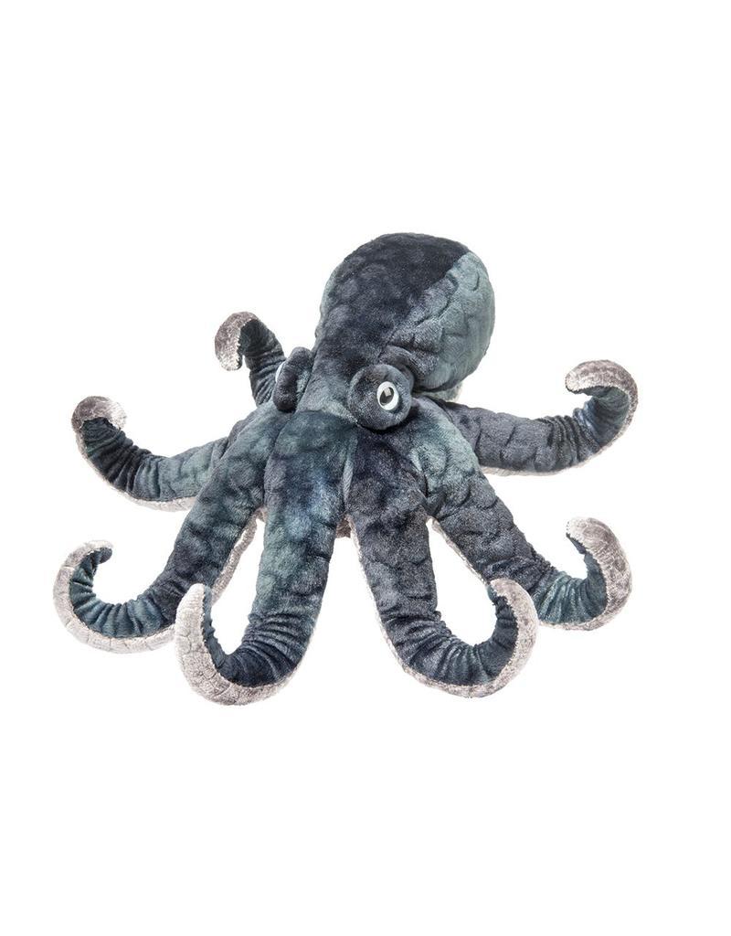 Douglas Winky Octopus