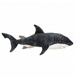 Douglas Neptune Blue Shark
