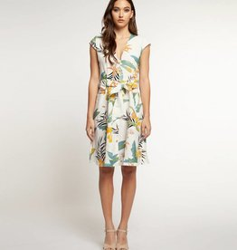 DEX Dex V-Neck Buttoned Front Dress